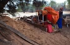 Leonardville: Addressing invasive Prosopis in the Nossob River